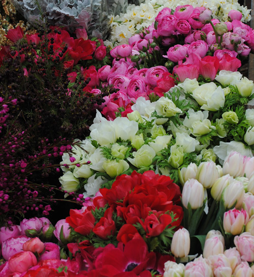 Lakeside Flowers Suppliers Of Farm Fresh Flowers To
